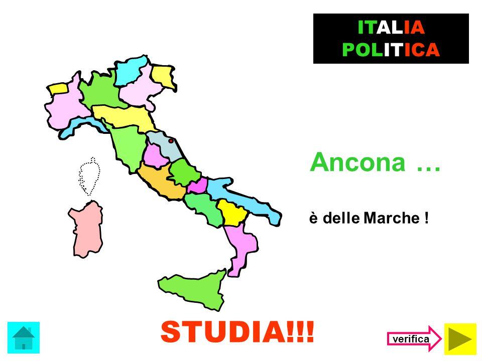 ITALIA POLITICA Ancona … è delle Marche ! STUDIA!!! verifica