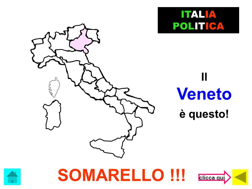 ITALIA POLITICA Il Veneto è questo! SOMARELLO !!! clicca qui