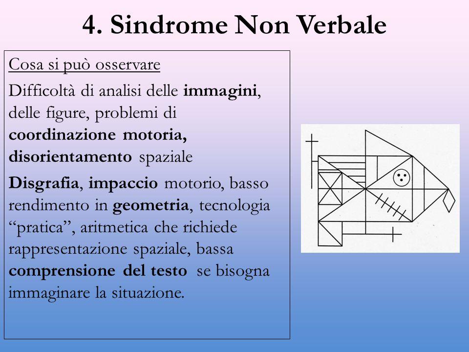 4. Sindrome Non Verbale Cosa si può osservare
