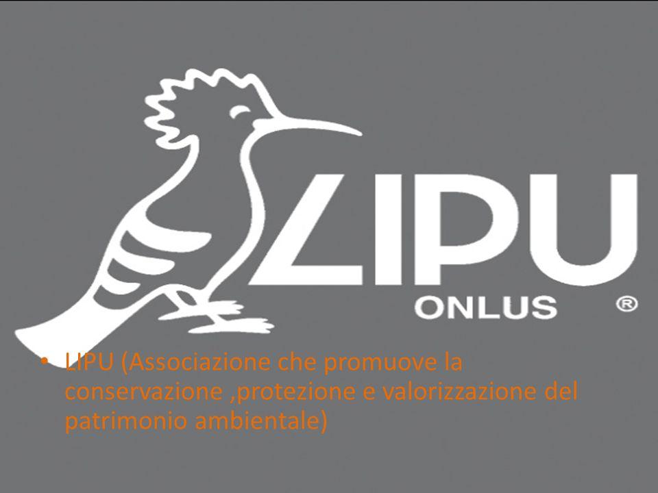 LIPU (Associazione che promuove la conservazione ,protezione e valorizzazione del patrimonio ambientale)