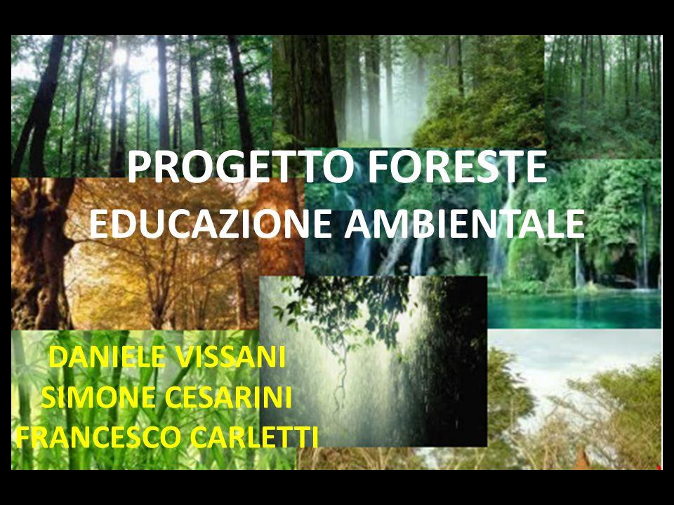 PROGETTO FORESTE EDUCAZIONE AMBIENTALE