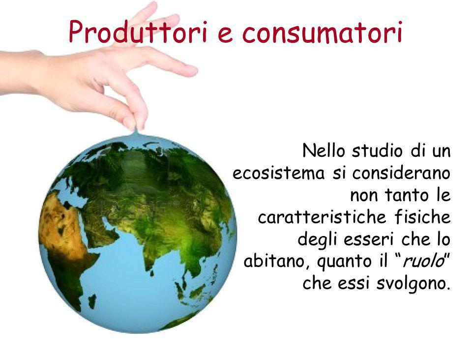 Produttori e consumatori