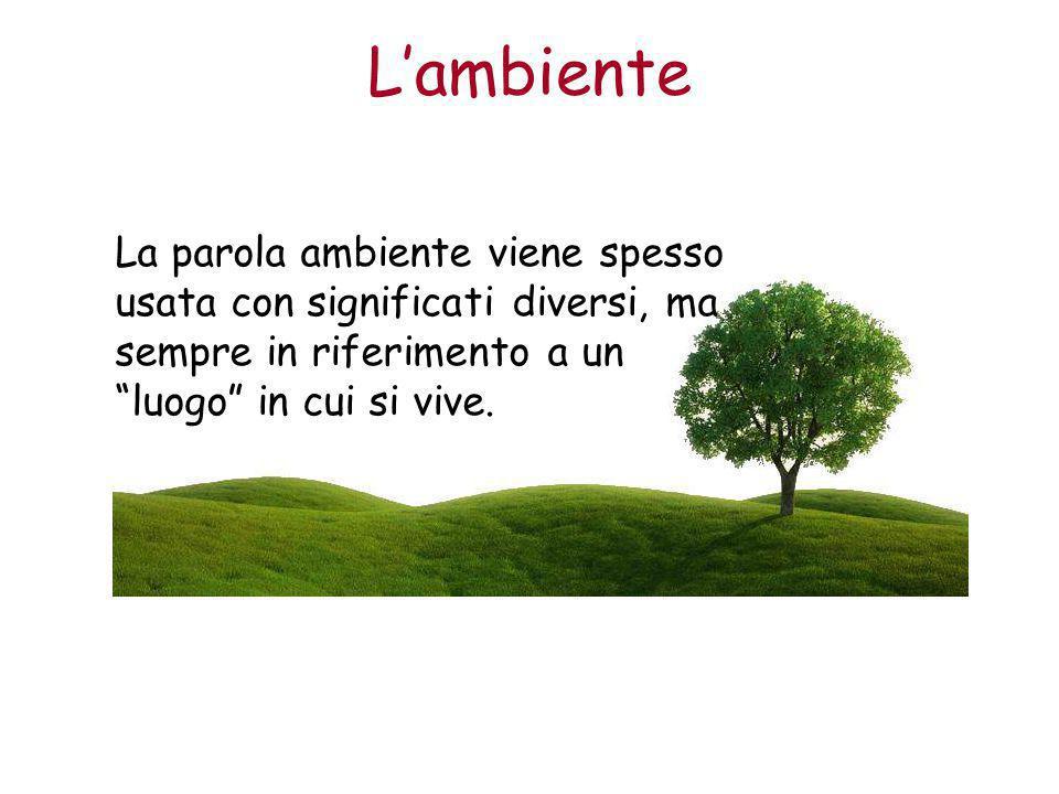 L'ambiente La parola ambiente viene spesso usata con significati diversi, ma sempre in riferimento a un luogo in cui si vive.