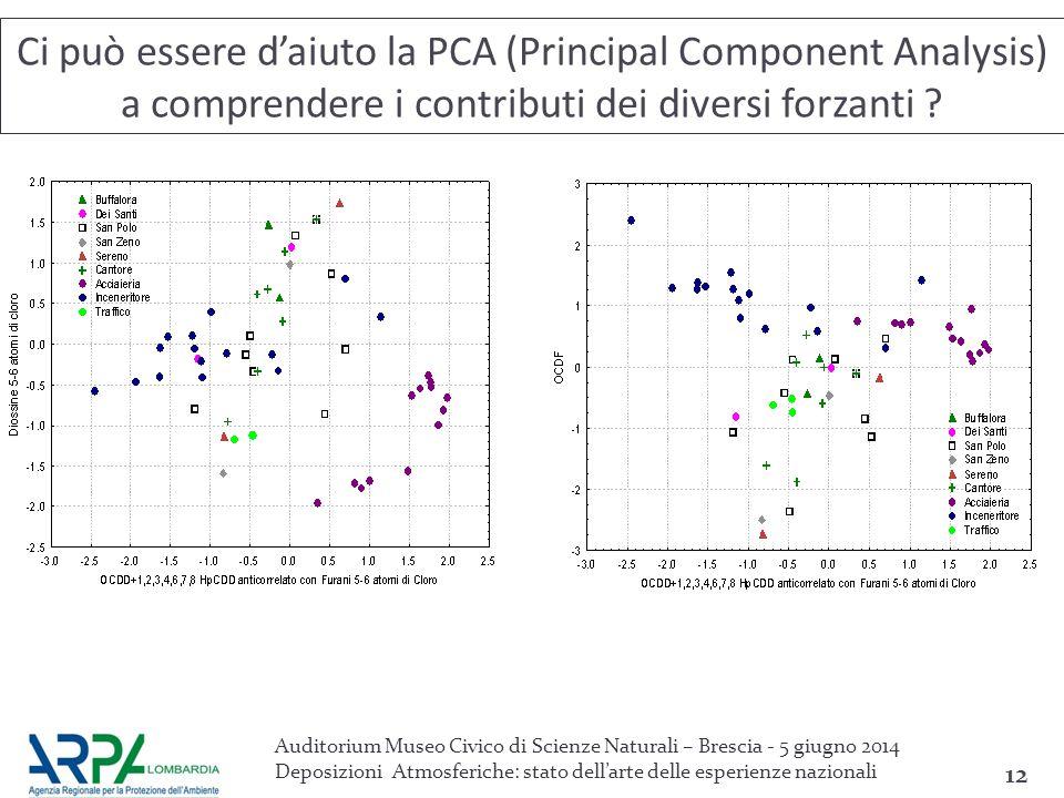 Ci può essere d'aiuto la PCA (Principal Component Analysis) a comprendere i contributi dei diversi forzanti