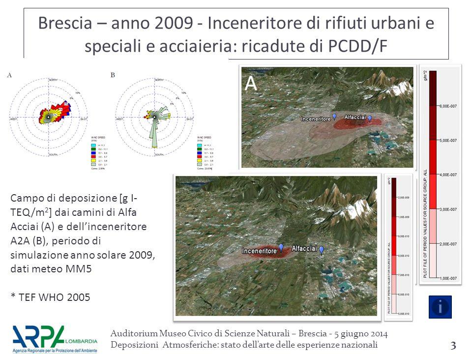 Brescia – anno 2009 - Inceneritore di rifiuti urbani e speciali e acciaieria: ricadute di PCDD/F