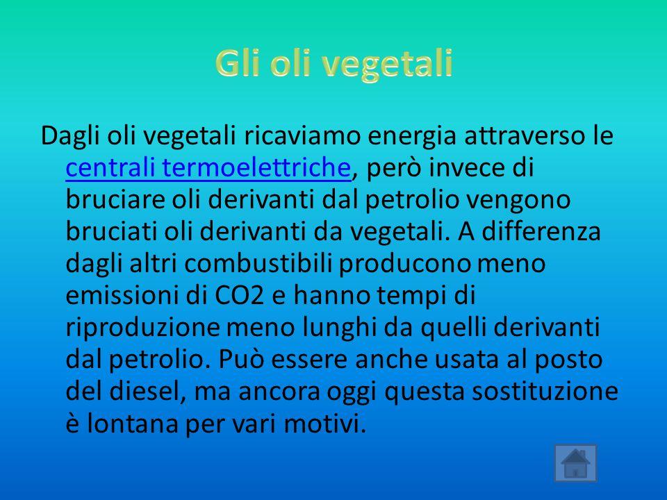 Gli oli vegetali