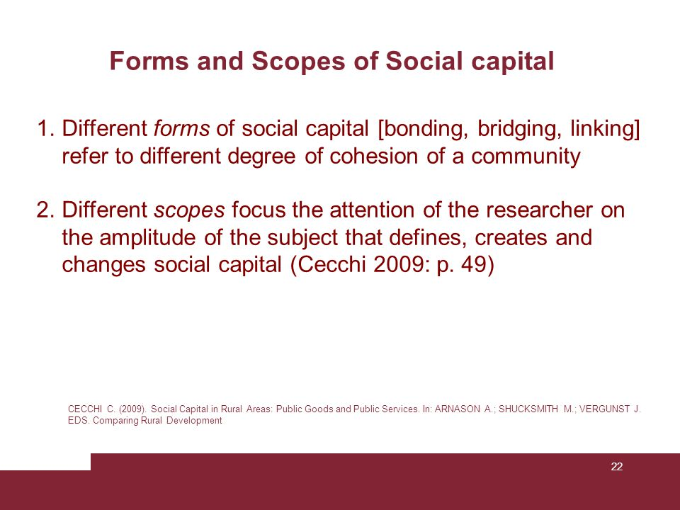 Forms and Scopes of Social capital