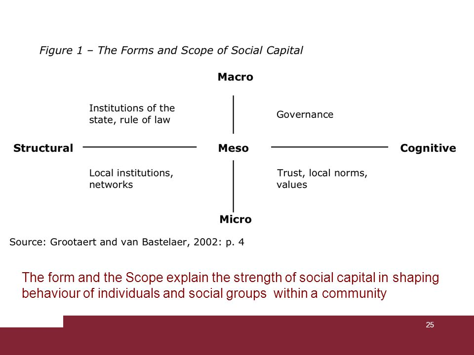 The form and the Scope explain the strength of social capital in shaping behaviour of individuals and social groups within a community