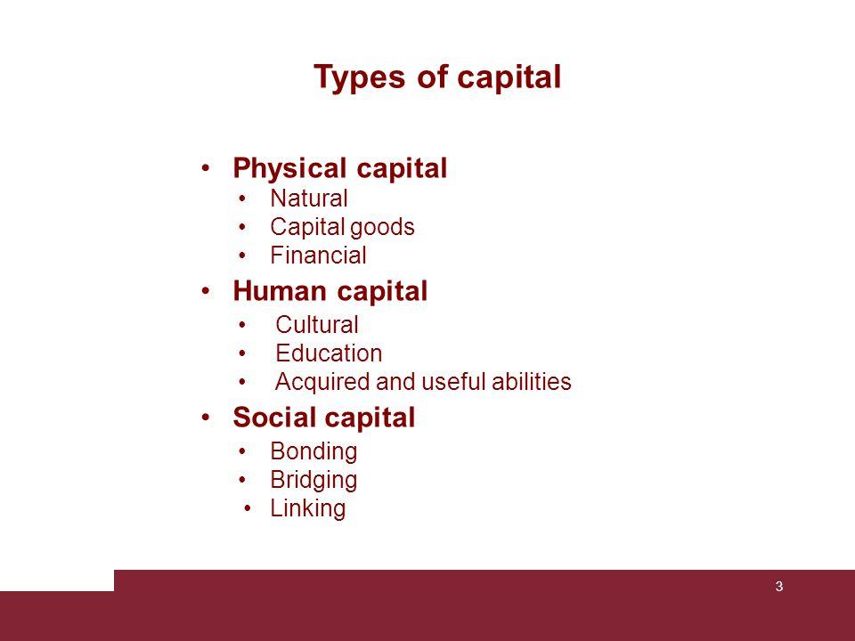 Types of capital Physical capital Human capital Social capital Natural