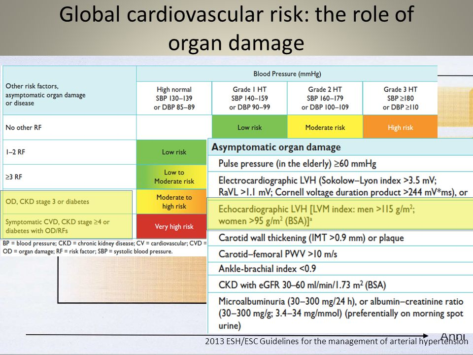 Global cardiovascular risk: the role of organ damage