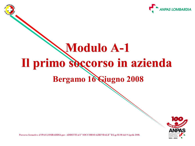 Modulo A-1 Il primo soccorso in azienda Bergamo 16 Giugno 2008