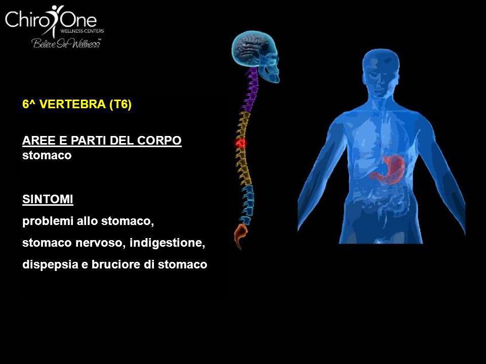6^ VERTEBRA (T6) AREE E PARTI DEL CORPO. stomaco. SINTOMI. problemi allo stomaco, stomaco nervoso, indigestione,