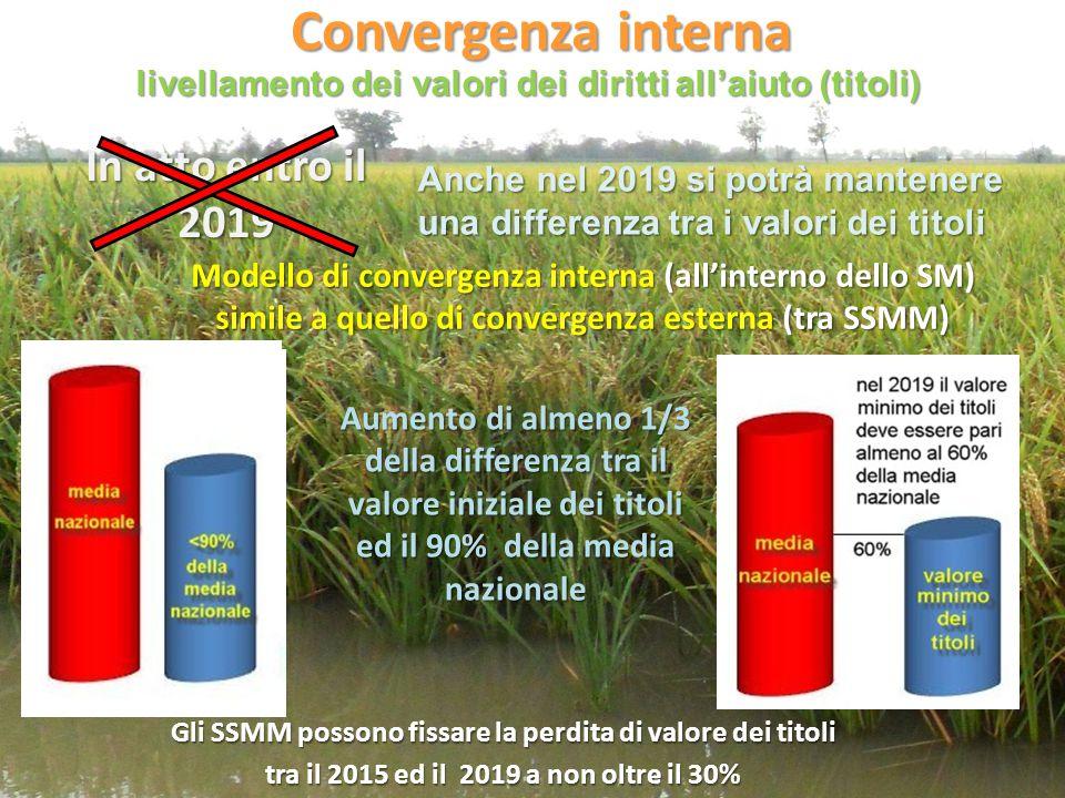 Convergenza interna In atto entro il 2019