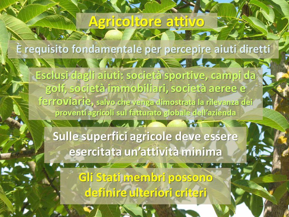 Agricoltore attivo È requisito fondamentale per percepire aiuti diretti.