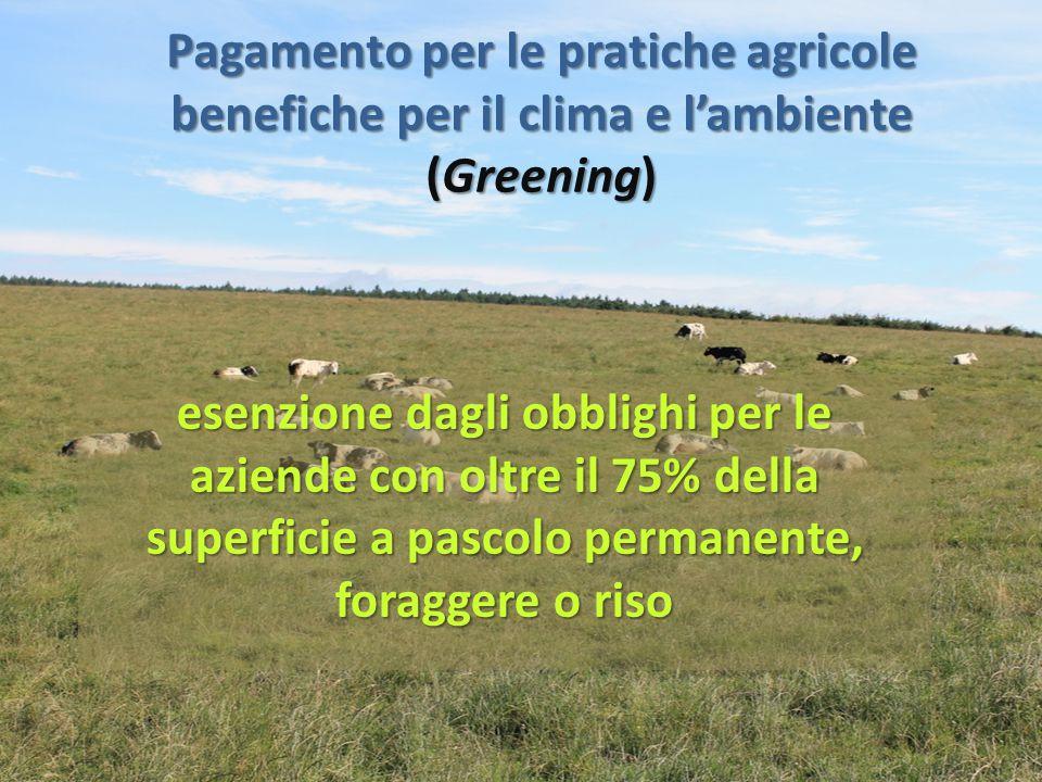 Pagamento per le pratiche agricole benefiche per il clima e l'ambiente (Greening)