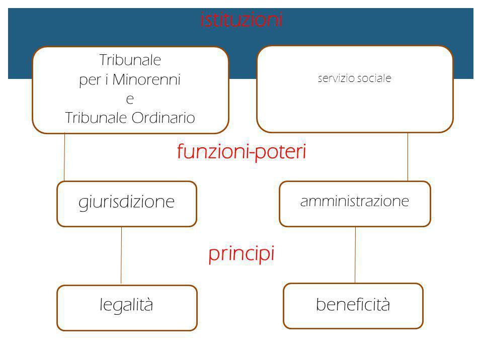istituzioni funzioni-poteri principi