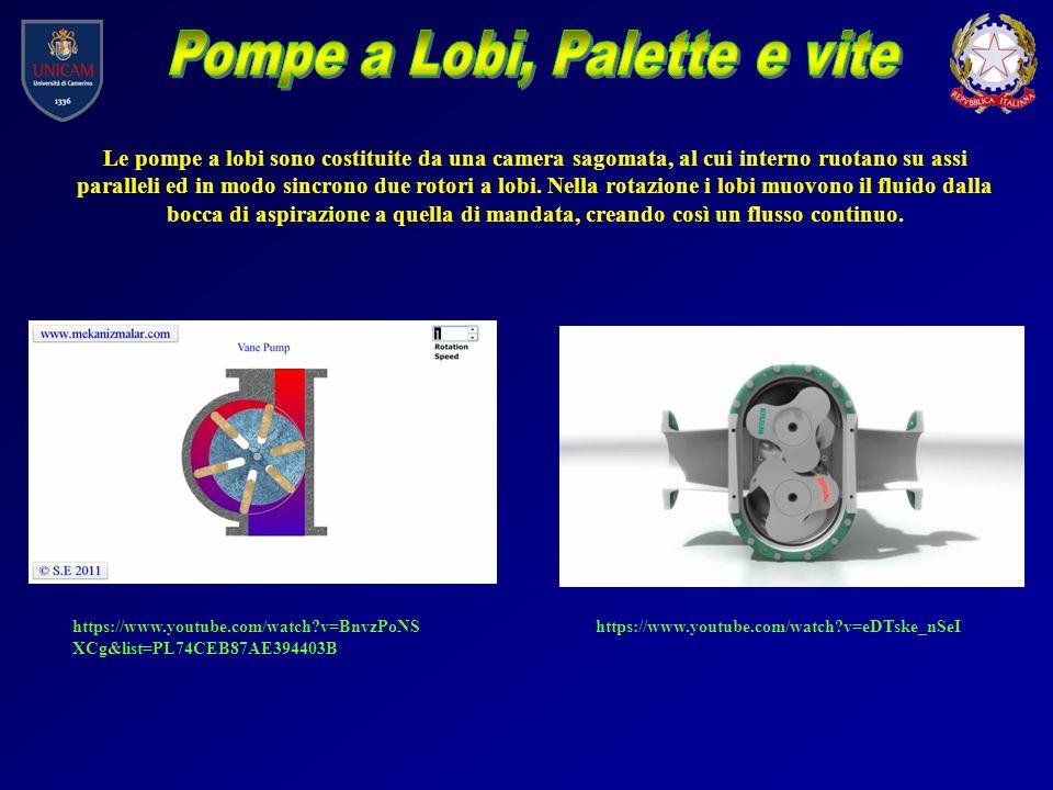 Pompe a Lobi, Palette e vite