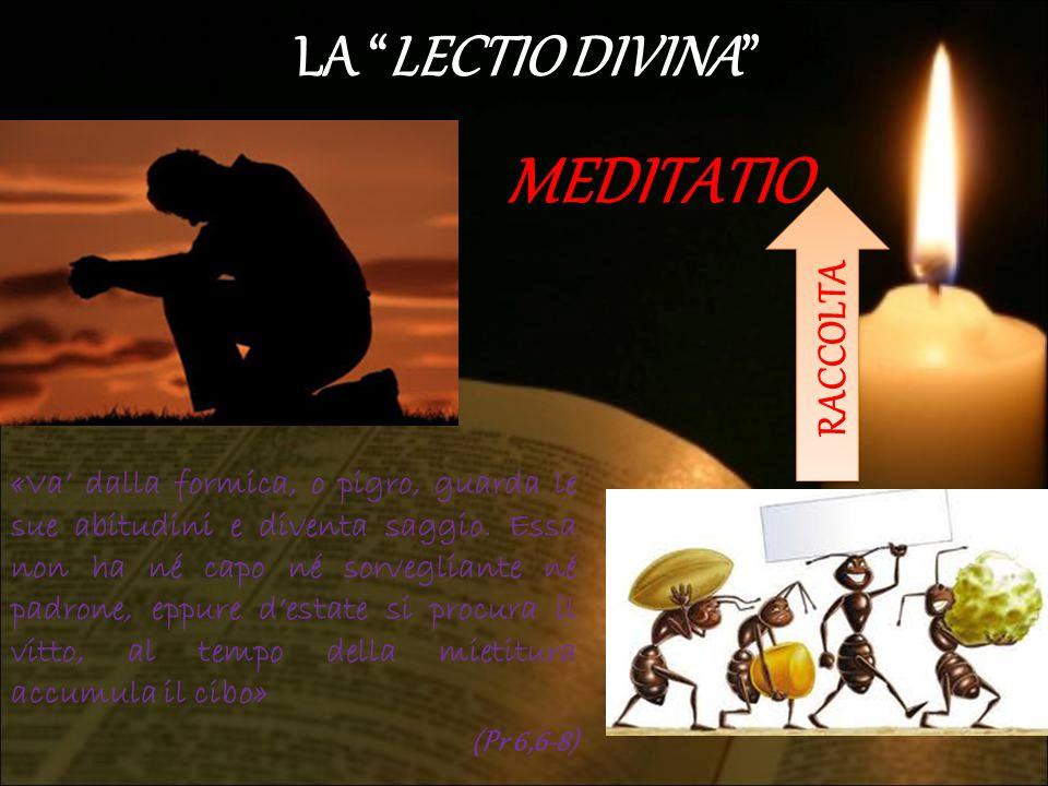 MEDITATIO LA LECTIO DIVINA RACCOLTA
