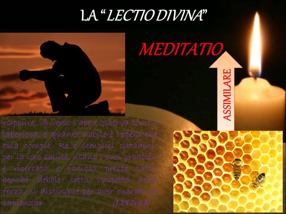 MEDITATIO LA LECTIO DIVINA ASSIMILARE