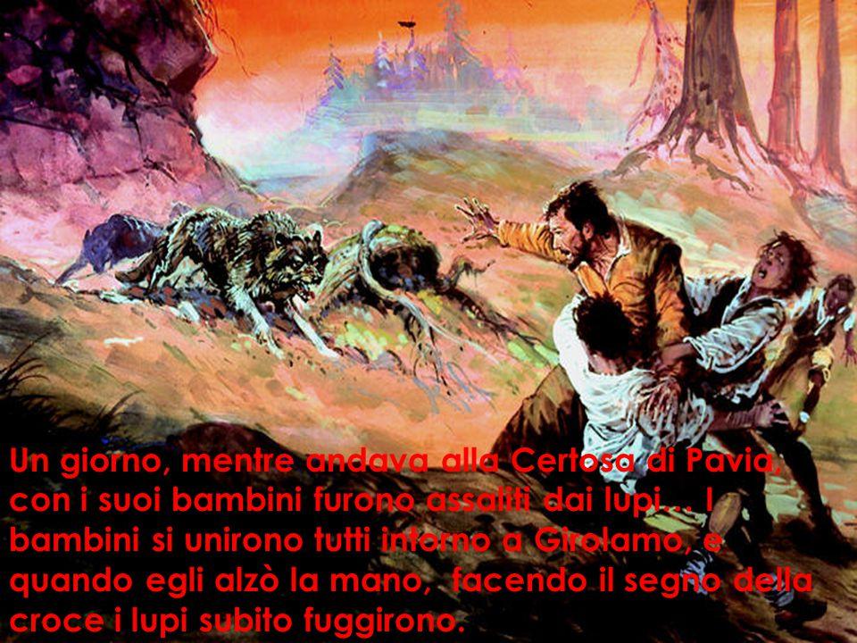 Un giorno, mentre andava alla Certosa di Pavia, con i suoi bambini furono assaliti dai lupi… I bambini si unirono tutti intorno a Girolamo, e quando egli alzò la mano, facendo il segno della croce i lupi subito fuggirono.