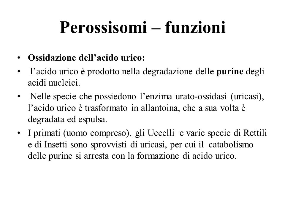 Perossisomi – funzioni