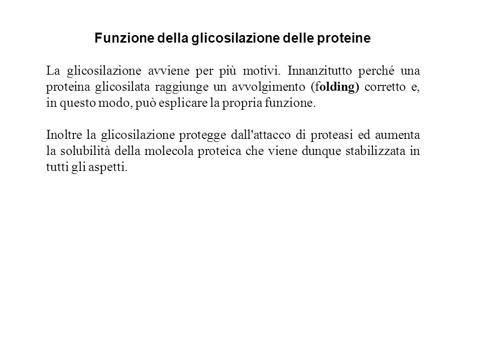 Funzione della glicosilazione delle proteine