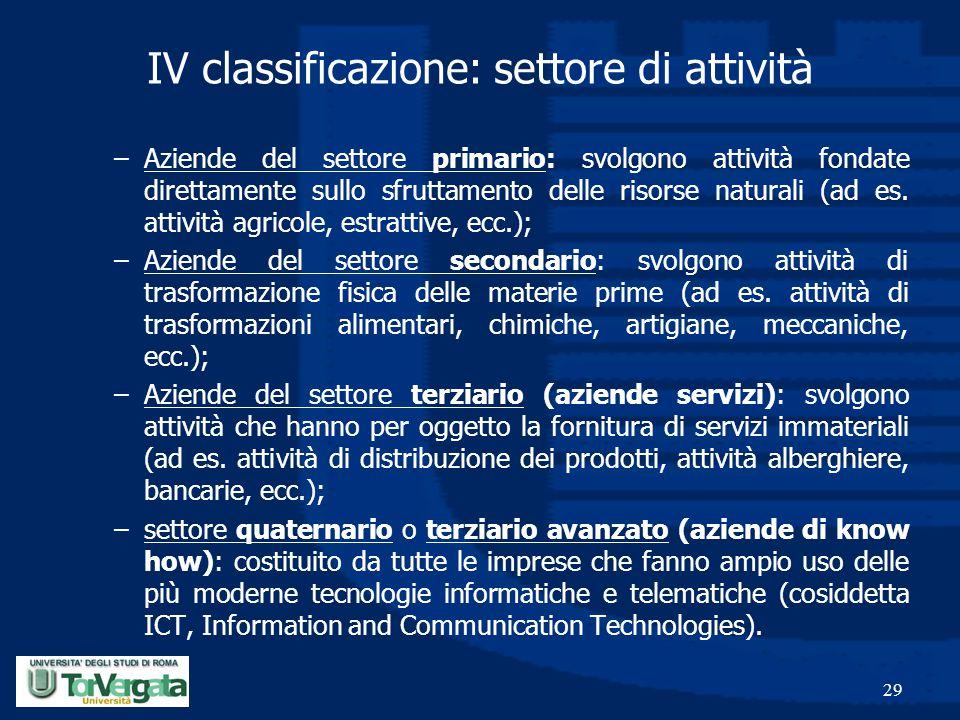 IV classificazione: settore di attività