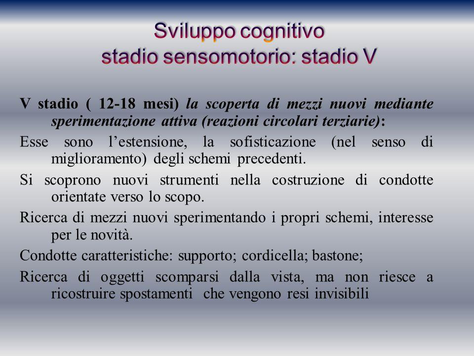 Sviluppo cognitivo stadio sensomotorio: stadio V