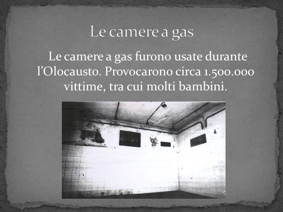 Le camere a gas Le camere a gas furono usate durante l'Olocausto.