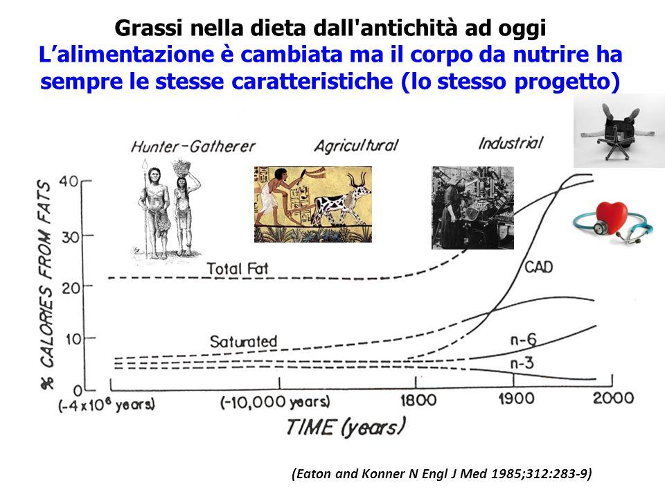 Grassi nella dieta dall antichità ad oggi