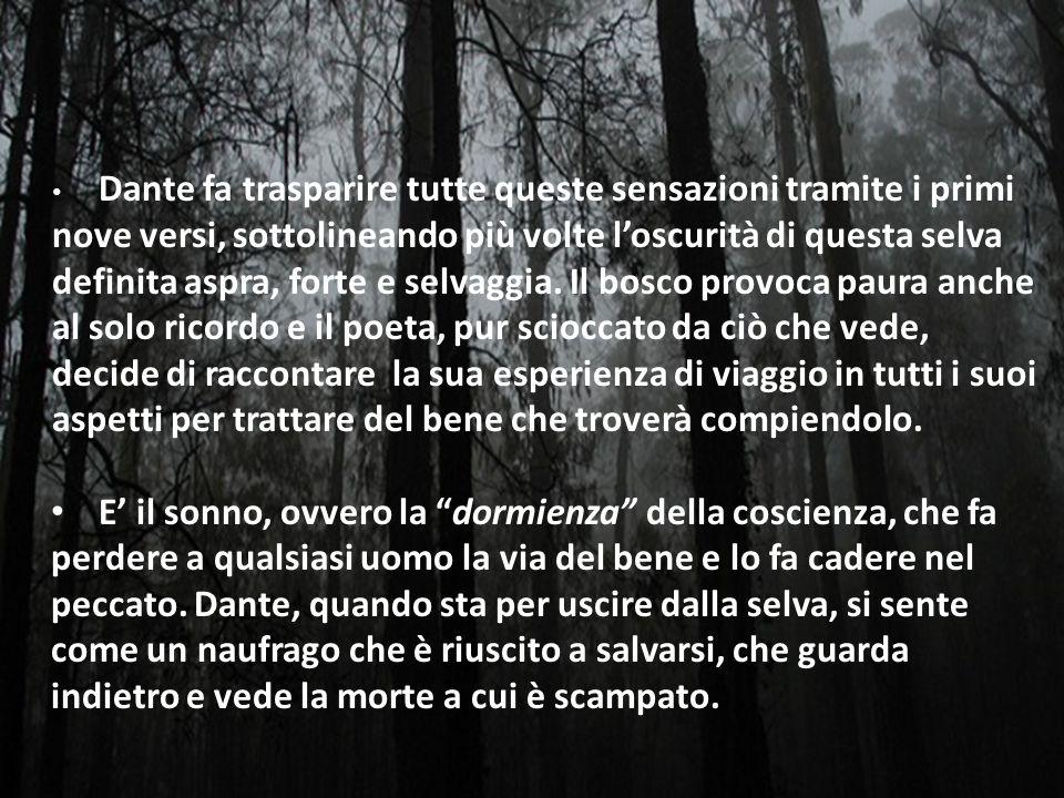 Dante fa trasparire tutte queste sensazioni tramite i primi nove versi, sottolineando più volte l'oscurità di questa selva definita aspra, forte e selvaggia. Il bosco provoca paura anche al solo ricordo e il poeta, pur scioccato da ciò che vede, decide di raccontare la sua esperienza di viaggio in tutti i suoi aspetti per trattare del bene che troverà compiendolo.