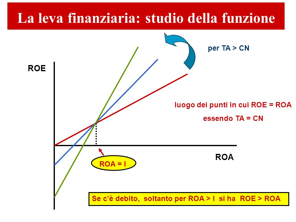 luogo dei punti in cui ROE = ROA