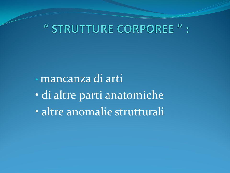 STRUTTURE CORPOREE :
