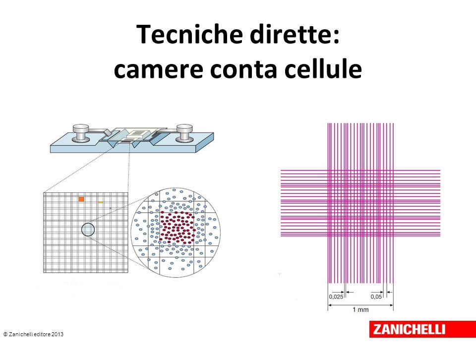 Tecniche dirette: camere conta cellule