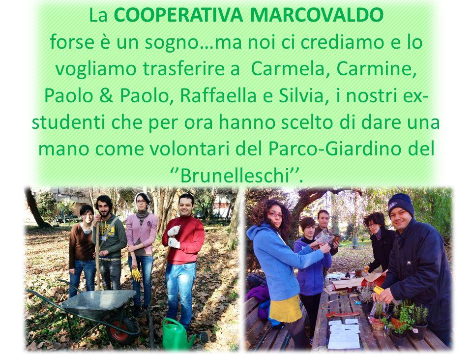 La COOPERATIVA MARCOVALDO forse è un sogno…ma noi ci crediamo e lo vogliamo trasferire a Carmela, Carmine, Paolo & Paolo, Raffaella e Silvia, i nostri ex-studenti che per ora hanno scelto di dare una mano come volontari del Parco-Giardino del ''Brunelleschi''.