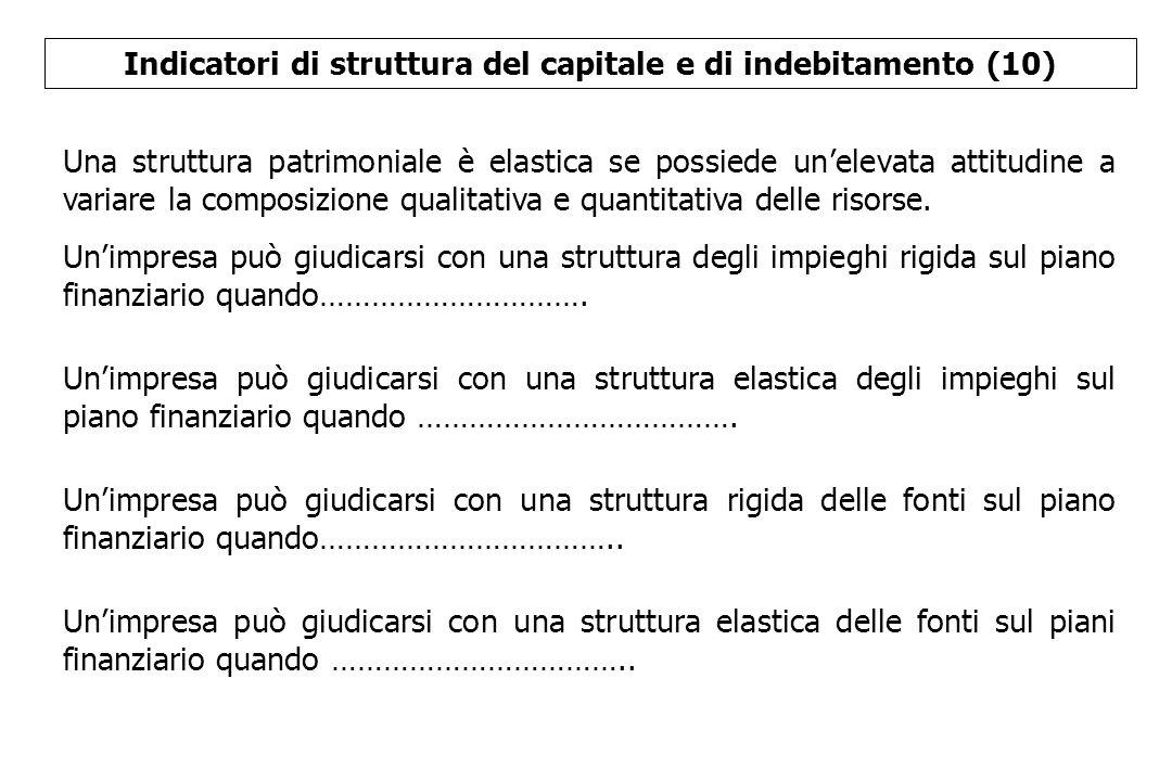 Indicatori di struttura del capitale e di indebitamento (10)