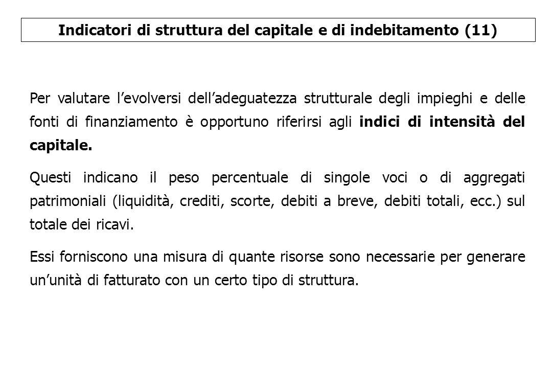 Indicatori di struttura del capitale e di indebitamento (11)