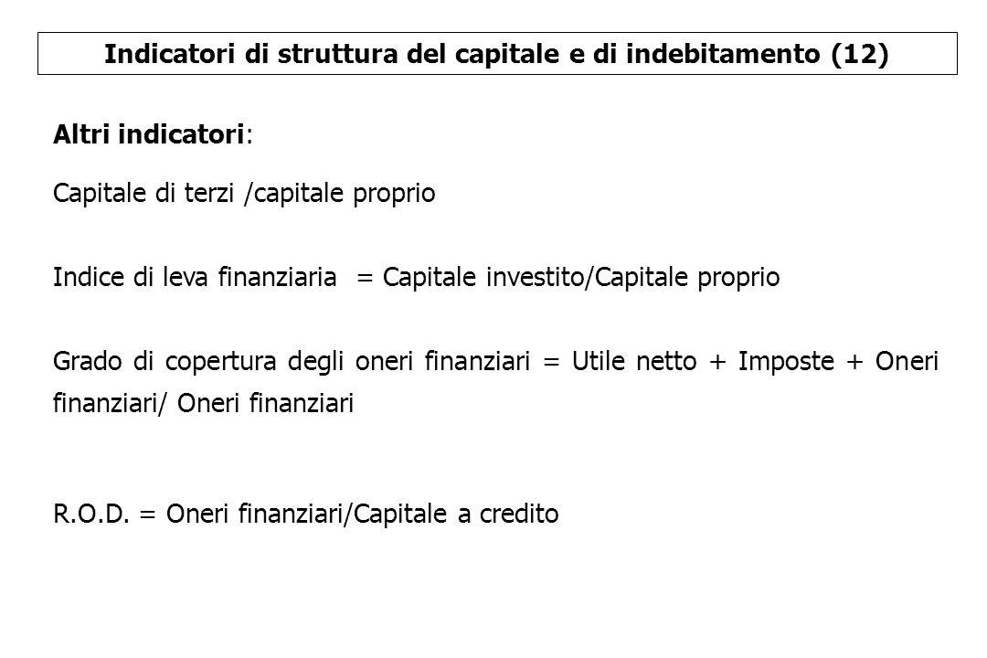 Indicatori di struttura del capitale e di indebitamento (12)