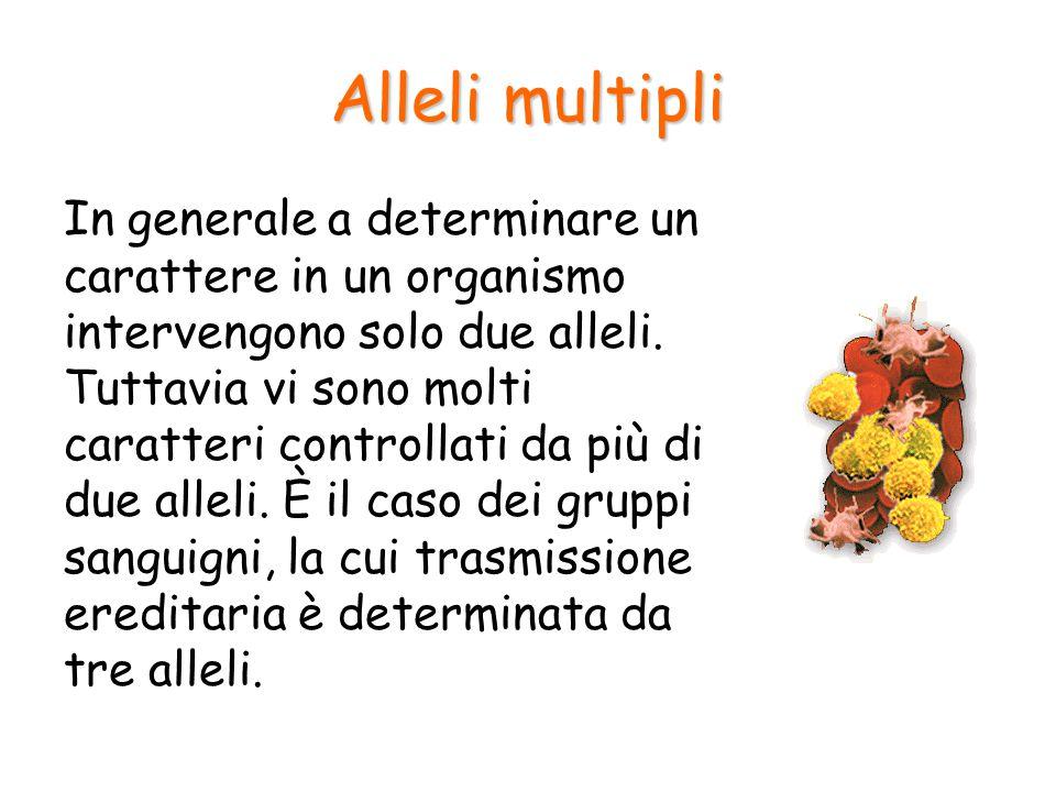 Alleli multipli