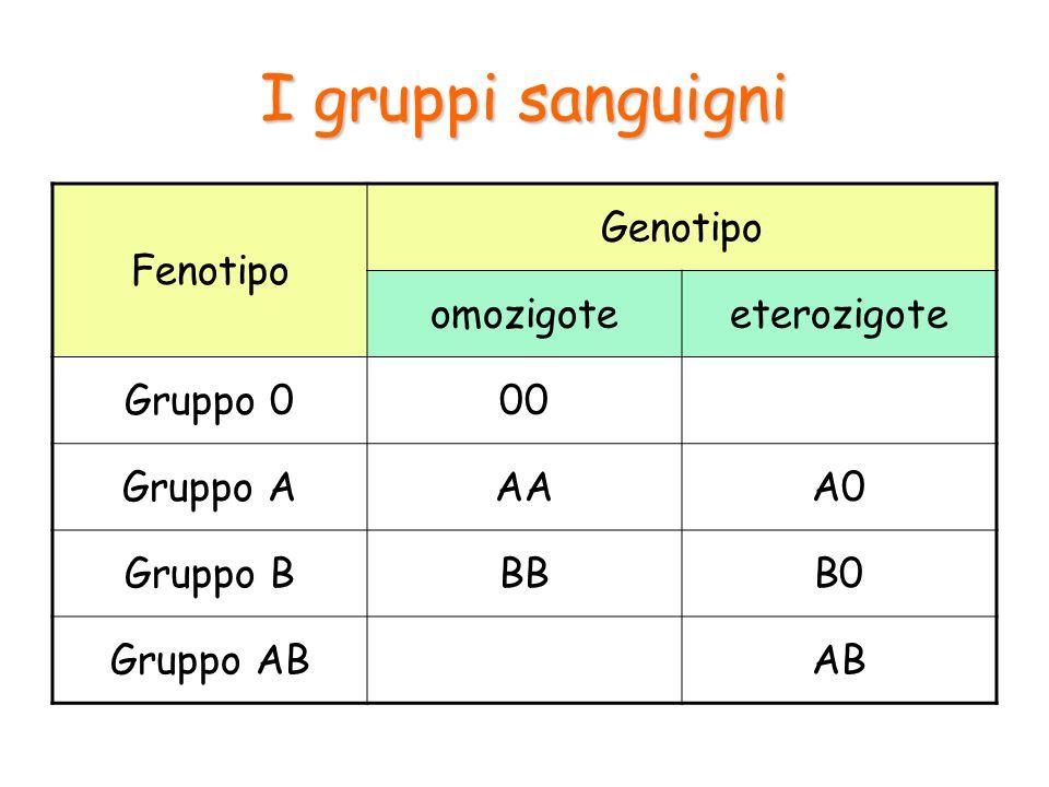 I gruppi sanguigni Fenotipo Genotipo omozigote eterozigote Gruppo 0 00