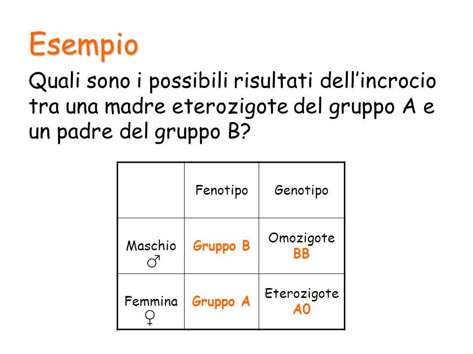 Esempio Quali sono i possibili risultati dell'incrocio tra una madre eterozigote del gruppo A e un padre del gruppo B