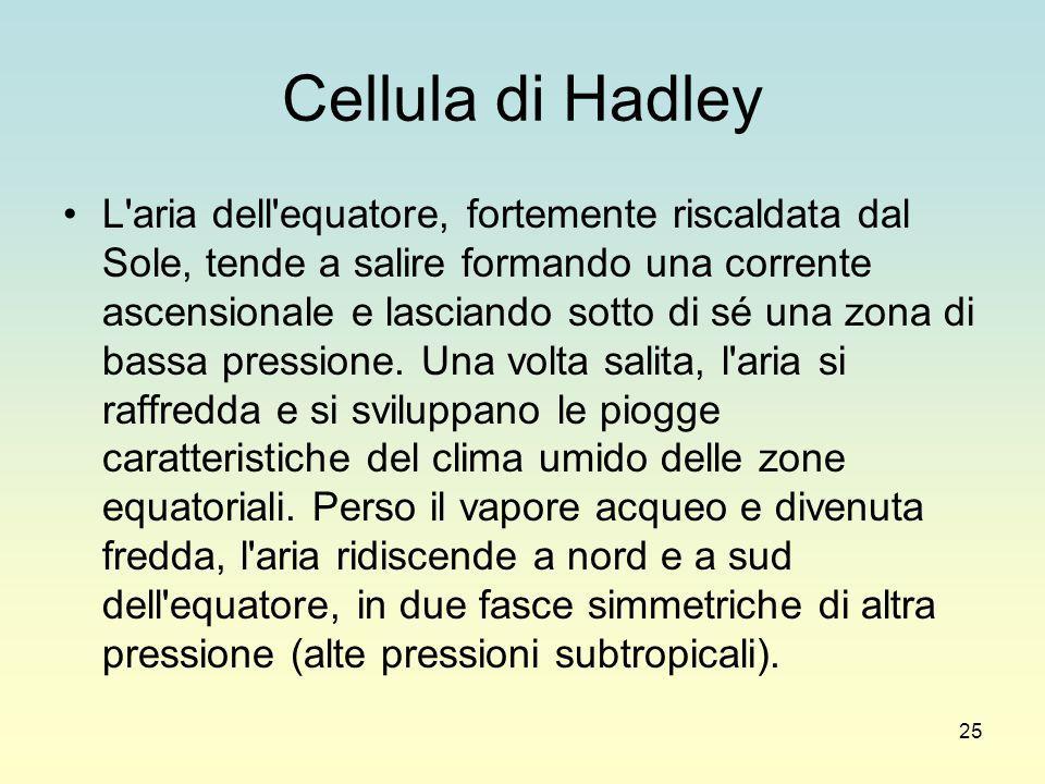 Cellula di Hadley