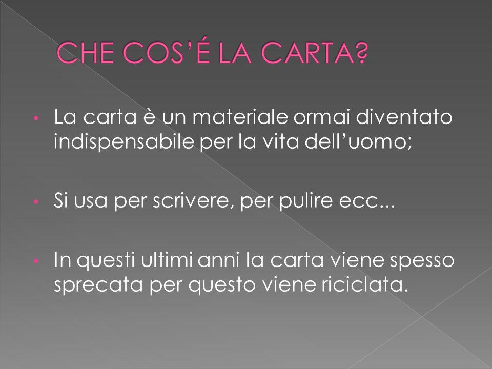 CHE COS'É LA CARTA La carta è un materiale ormai diventato indispensabile per la vita dell'uomo; Si usa per scrivere, per pulire ecc...