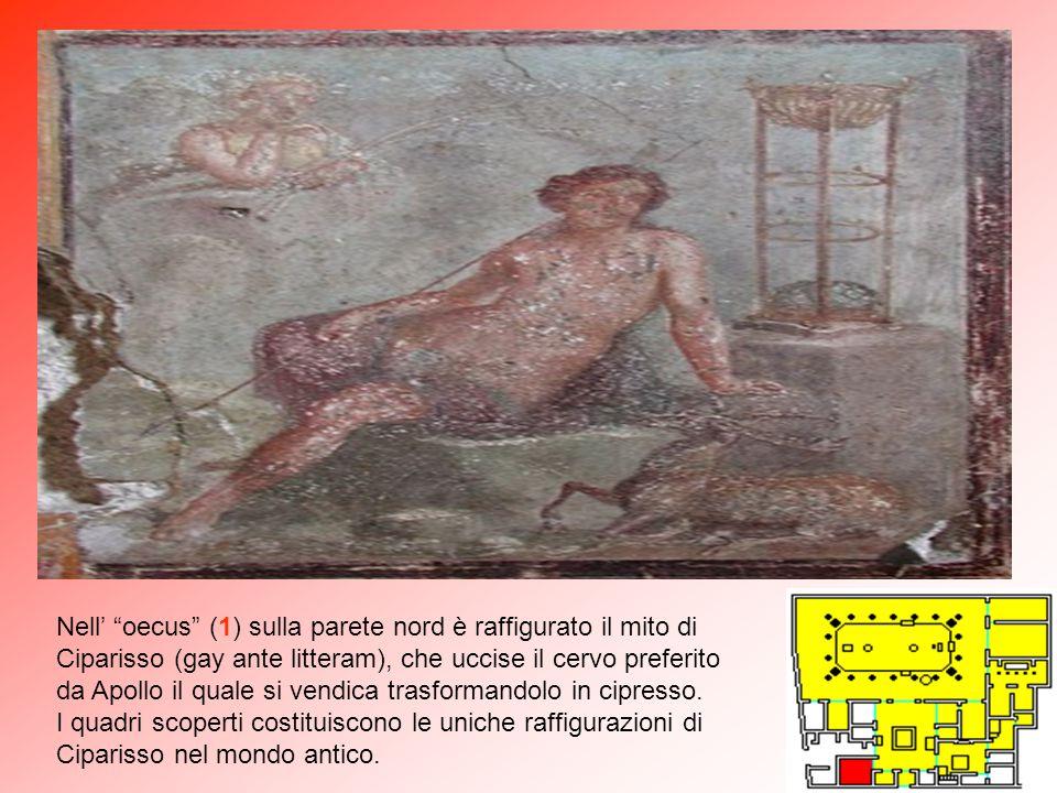 Nell' oecus (1) sulla parete nord è raffigurato il mito di Ciparisso (gay ante litteram), che uccise il cervo preferito da Apollo il quale si vendica trasformandolo in cipresso.