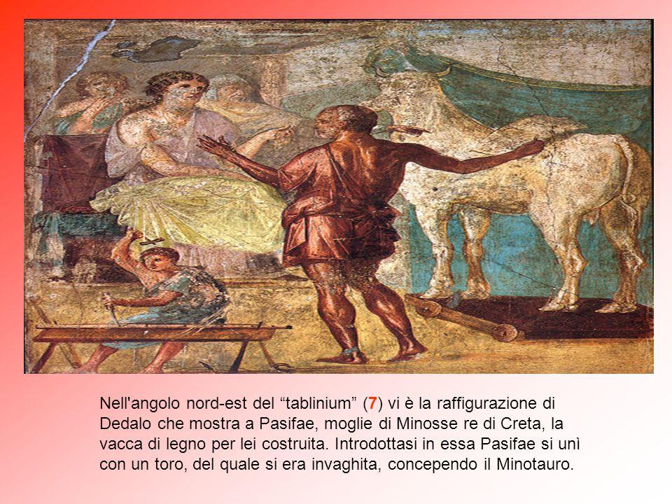 Nell angolo nord-est del tablinium (7) vi è la raffigurazione di Dedalo che mostra a Pasifae, moglie di Minosse re di Creta, la vacca di legno per lei costruita.