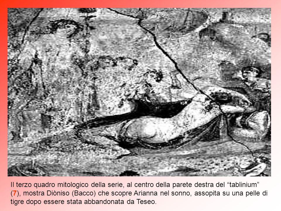 Il terzo quadro mitologico della serie, al centro della parete destra del tablinium (7), mostra Diòniso (Bacco) che scopre Arianna nel sonno, assopita su una pelle di tigre dopo essere stata abbandonata da Teseo.