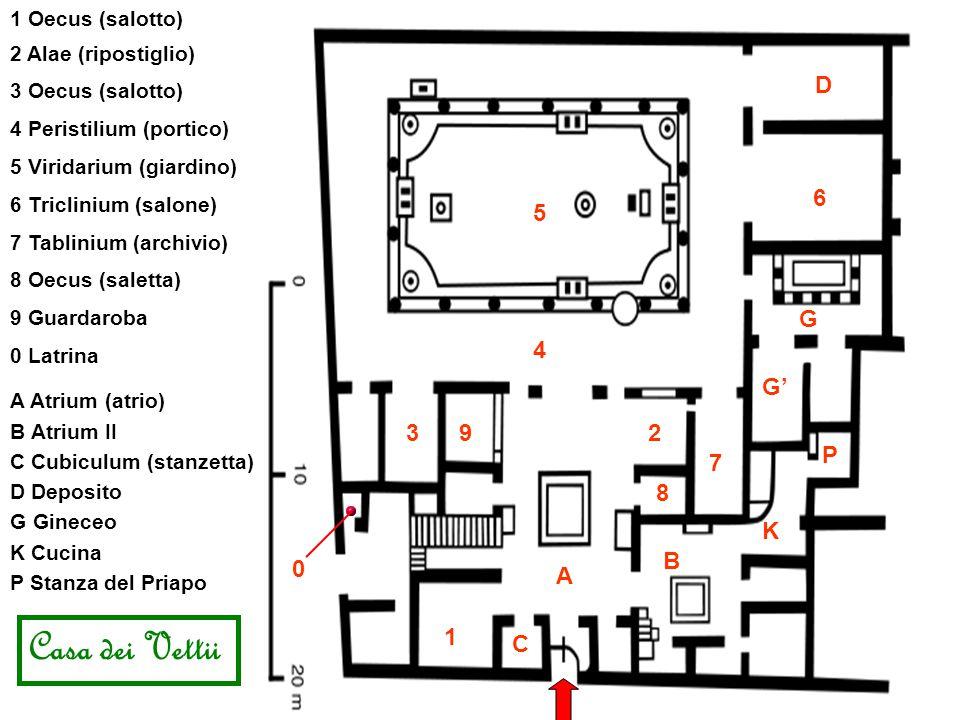Casa dei Vettii D 6 5 G 4 G' 3 9 2 P 7 8 K B A 1 C 1 Oecus (salotto)