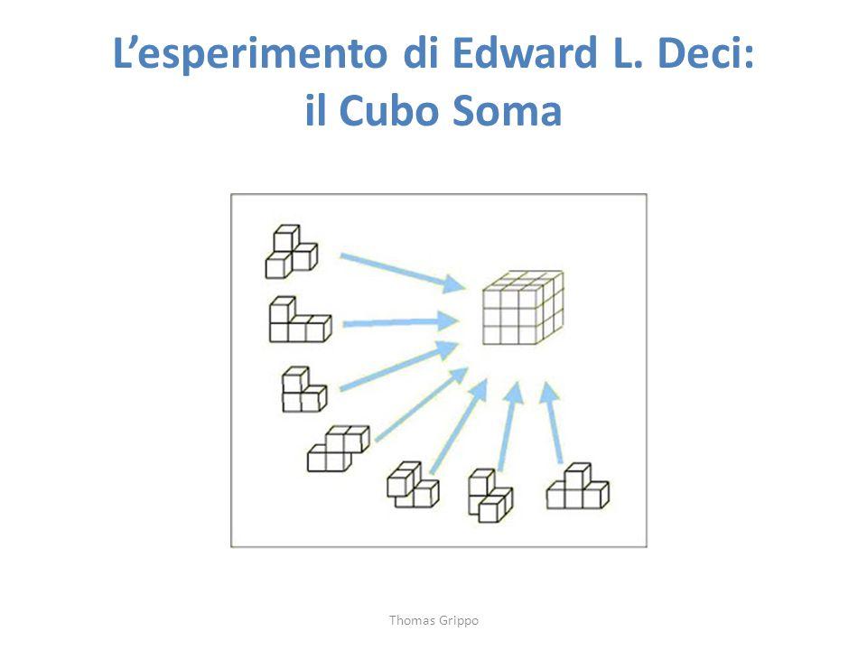 L'esperimento di Edward L. Deci: il Cubo Soma