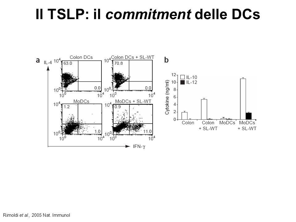 Il TSLP: il commitment delle DCs