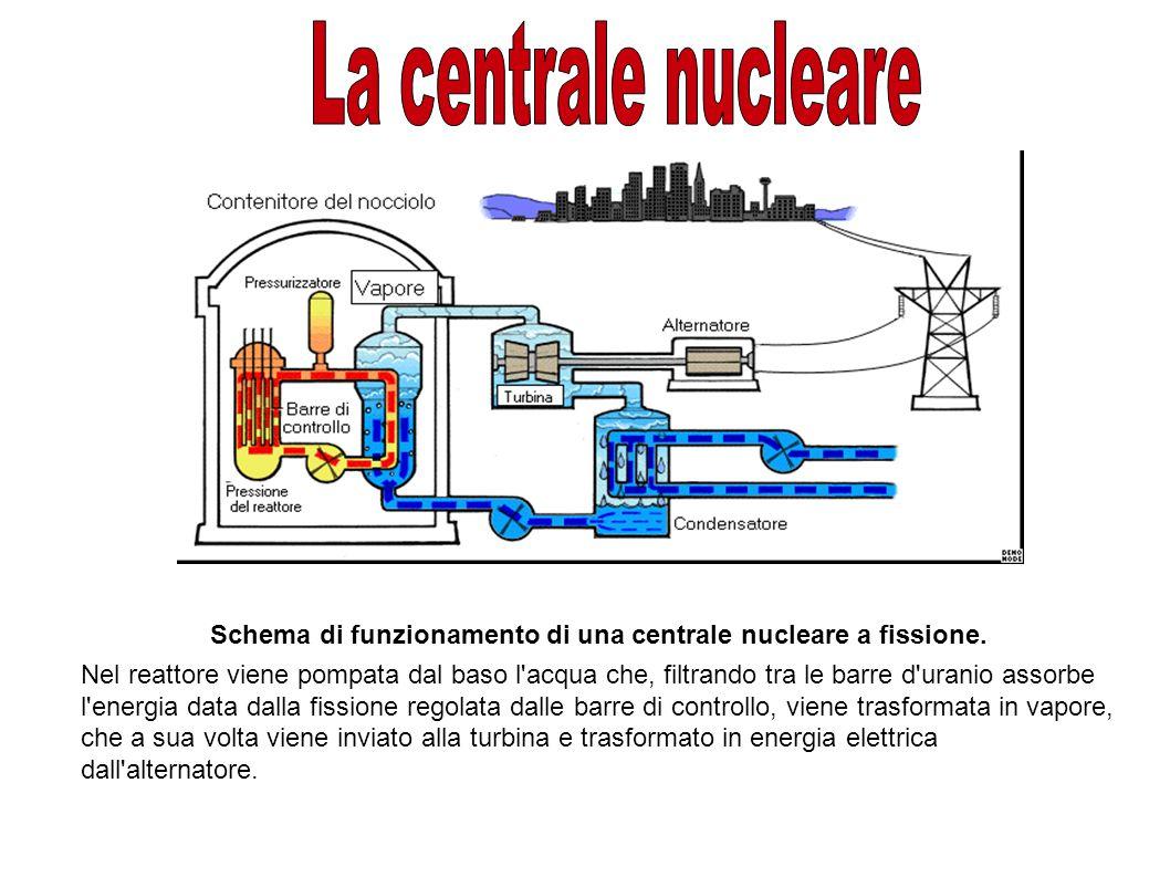 Schema di funzionamento di una centrale nucleare a fissione.